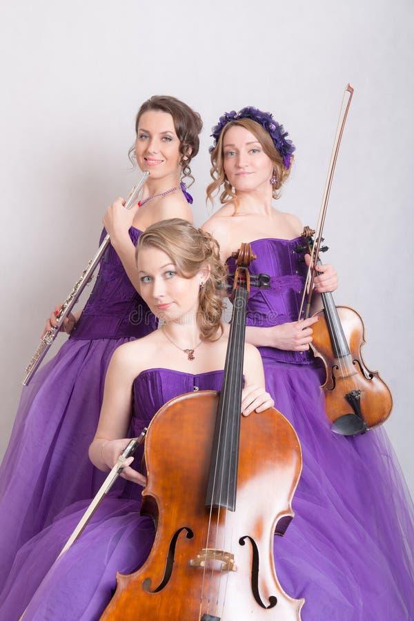 Muzikaal trio met instrumenten royalty-vrije stock afbeeldingen