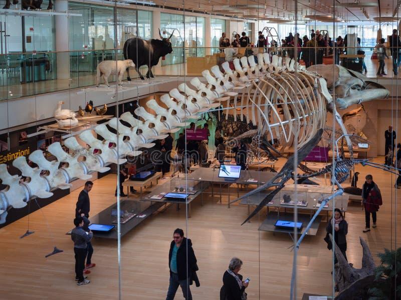 ` muzy ` jest muzeum nauka w Trento projektował Włoskim architektem Renzo Piano fotografia royalty free