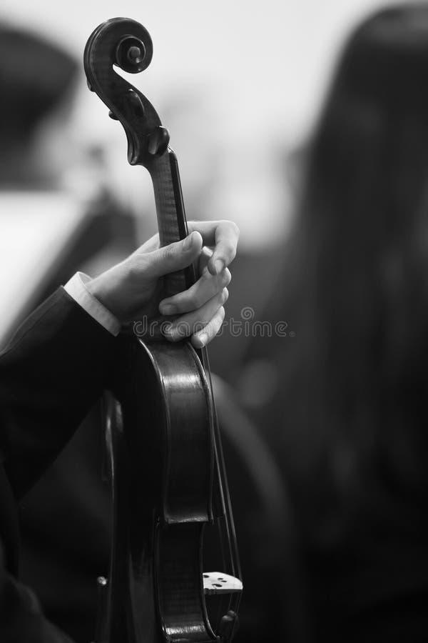 Muzyk ręki mienia skrzypce obraz royalty free