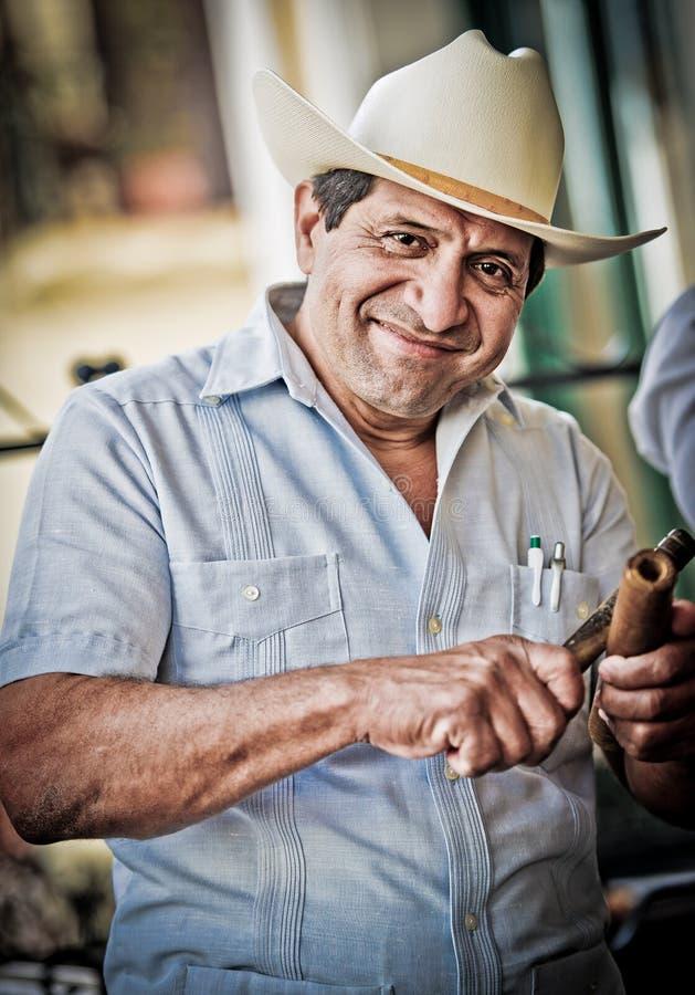 Muzyk w Havana fotografia royalty free