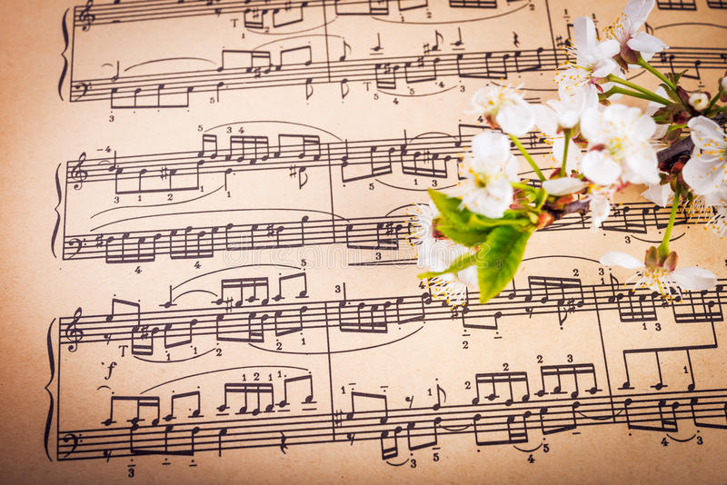 Download Muzykalny Tło Z Wiosna Kwiatami Zdjęcie Stock - Obraz złożonej z klucz, papier: 53776726
