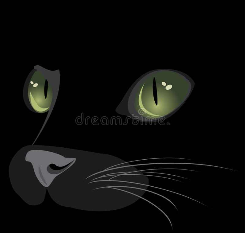 Muzzle of black cat. Illustration vector illustration