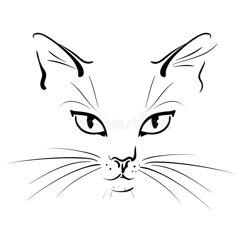 Muzzle of a cat. With whisker - a vector illustration vector illustration