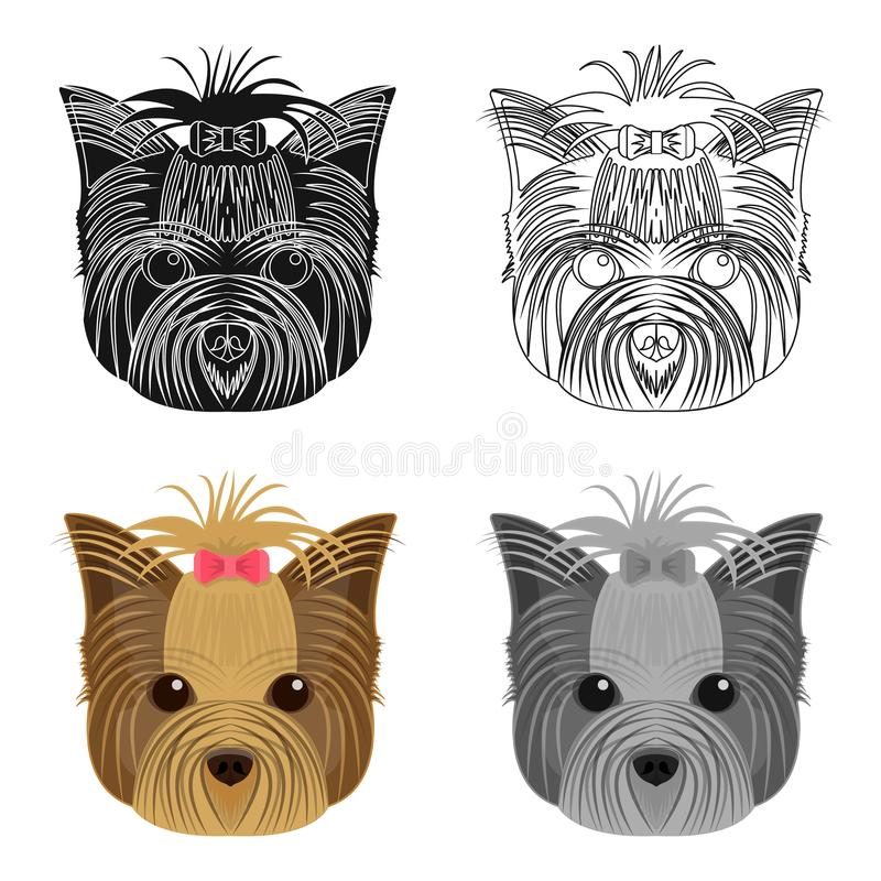 Muzzle of a pet, a hairdress dog with a bow. Pet ,dog care single icon in cartoon style vector symbol stock illustration. Muzzle of a pet, a hairdress dog with a vector illustration