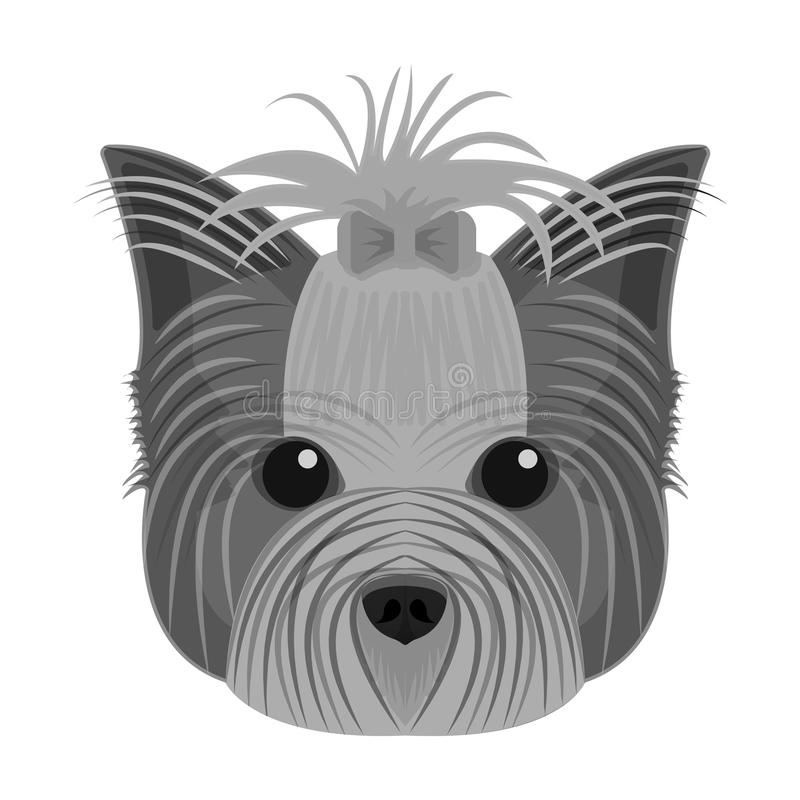Muzzle of a pet, a hairdress dog with a bow. Pet ,dog care single icon in monochromt style vector symbol stock. Muzzle of a pet, a hairdress dog with a bow. Pet vector illustration
