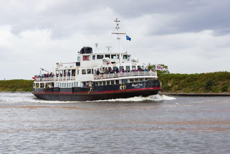 MV Royal Iris of the Mersey royalty-vrije stock fotografie