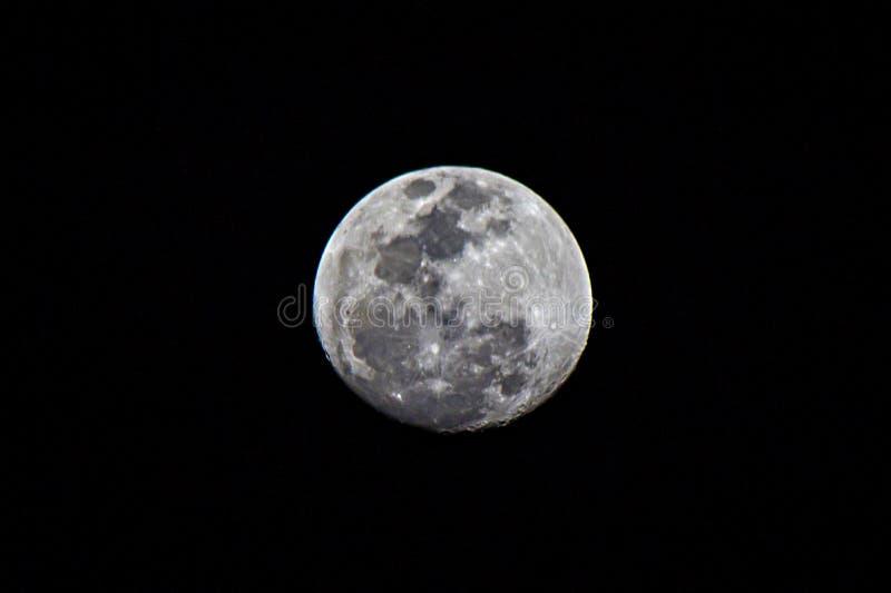 Myśliwy księżyc obrazy stock