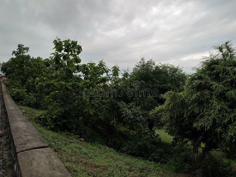 My amarnath yatra. Pics, taken, vivo stock image