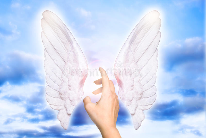 My angel. A female hand touching divine light of angel wings like a concept for angel love, guardian angels and angel protection