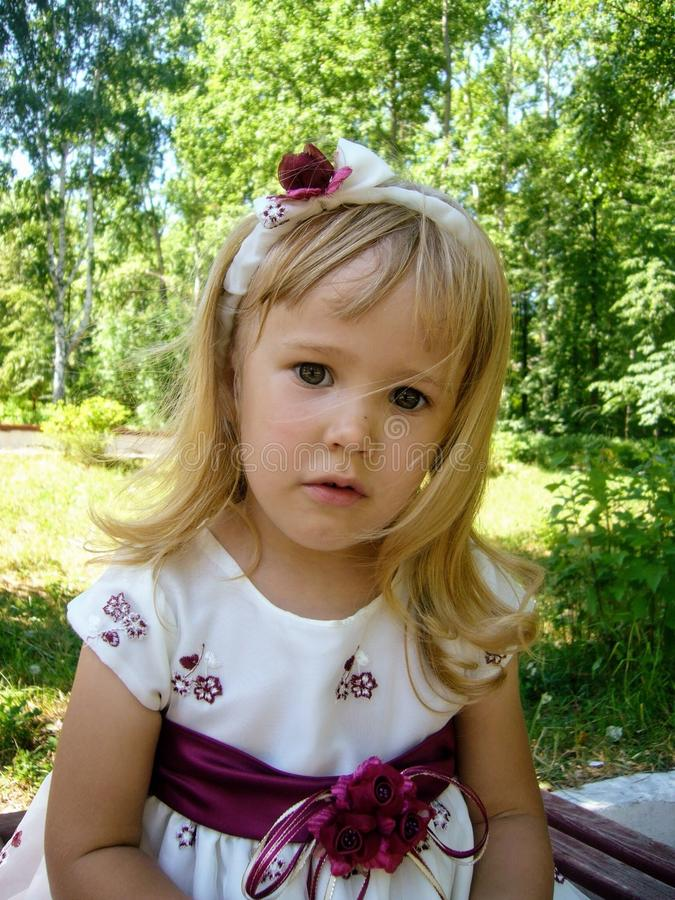 Cute little girl posing to photographer royalty free stock image