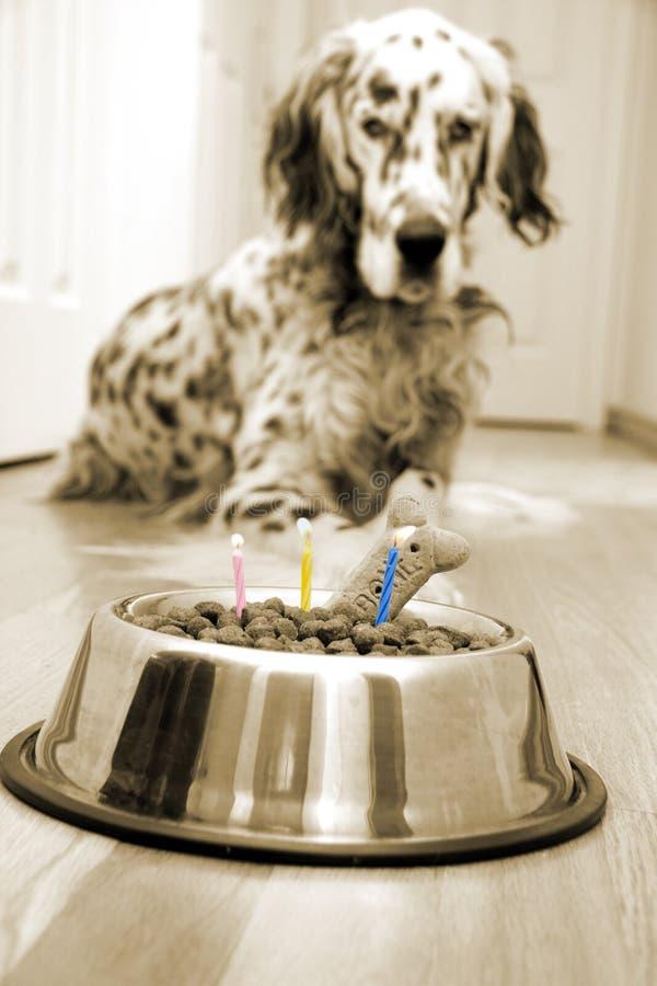 My best friend's birthday stock image