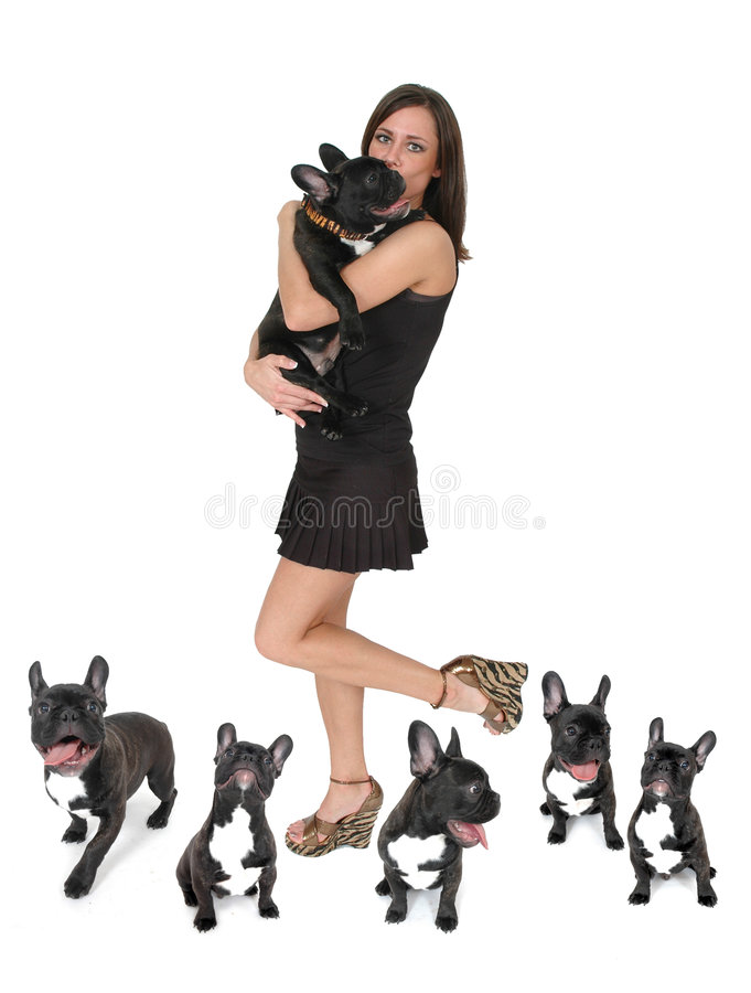 My Happy Dog. Beautiful fashionable woman with her French Bull dog. The many expressions of a happy dog. Composite of several images of one dog and his owner royalty free stock images