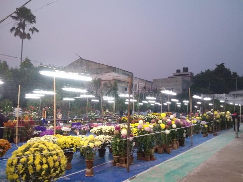 My hometown balurghat magical moment of flower fair. Flower fair in my hometown stock photos