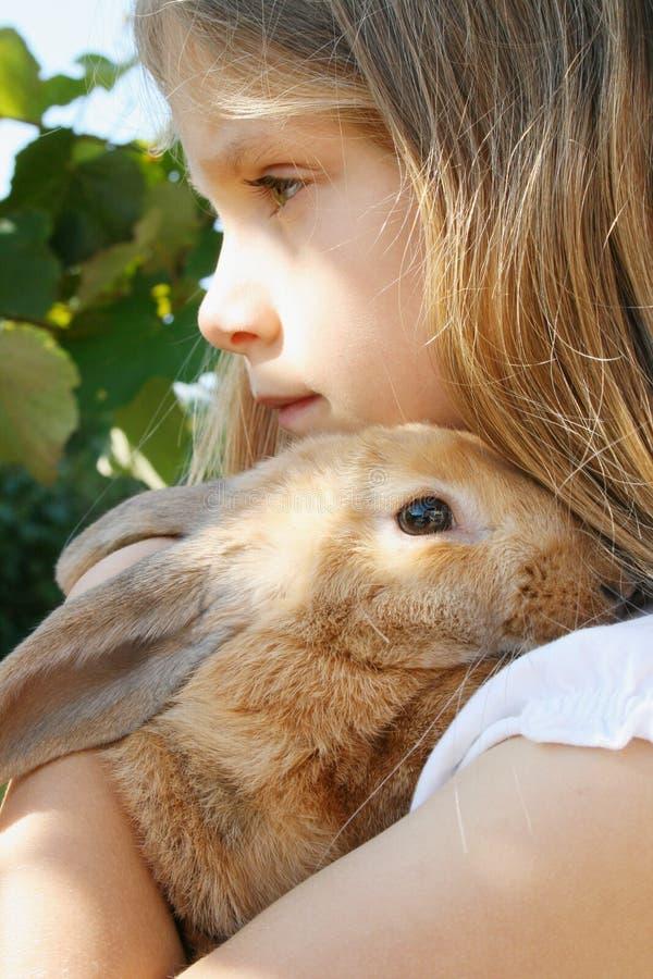 My little rabbit royalty free stock photography