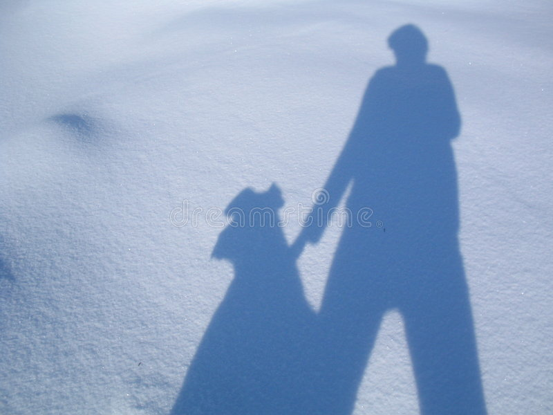 My and my dog´s shadow stock photos
