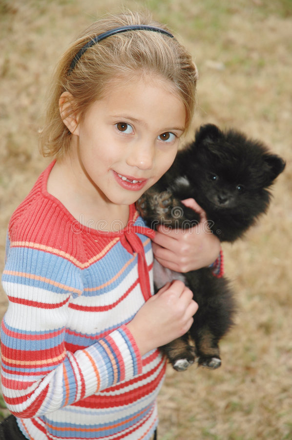 My new puppy. Little girl holds her new pomeranian puppy stock images