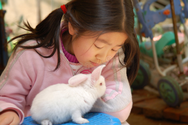 My pet. Little asian girl with the baby rabbit royalty free stock photography