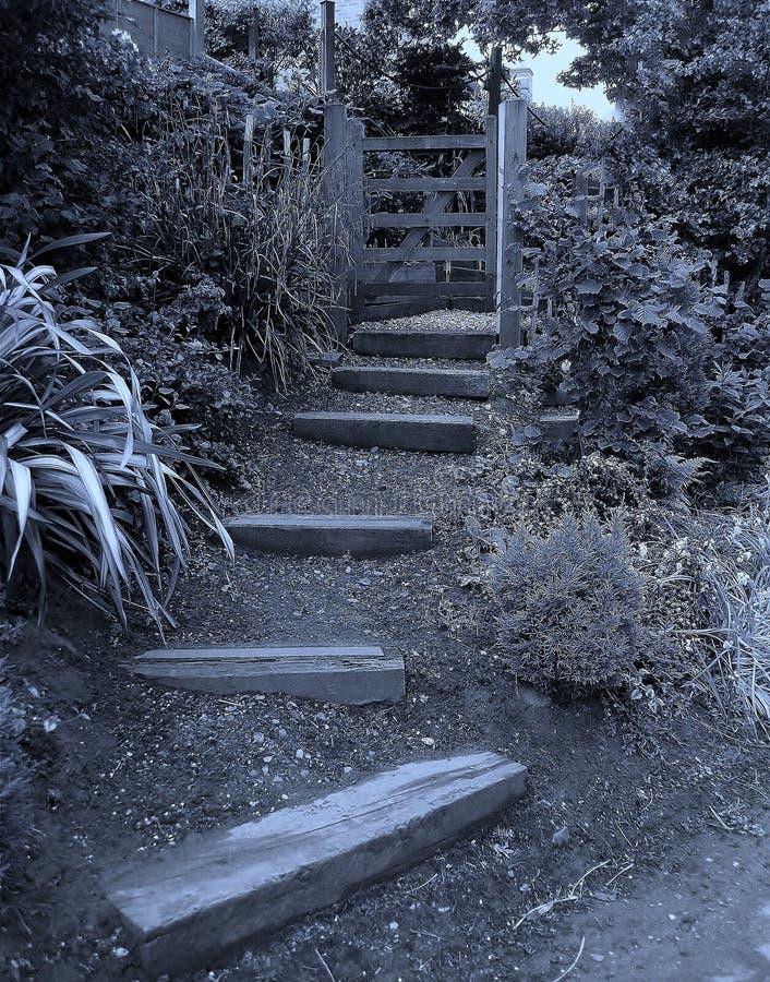 My secret garden stock photos