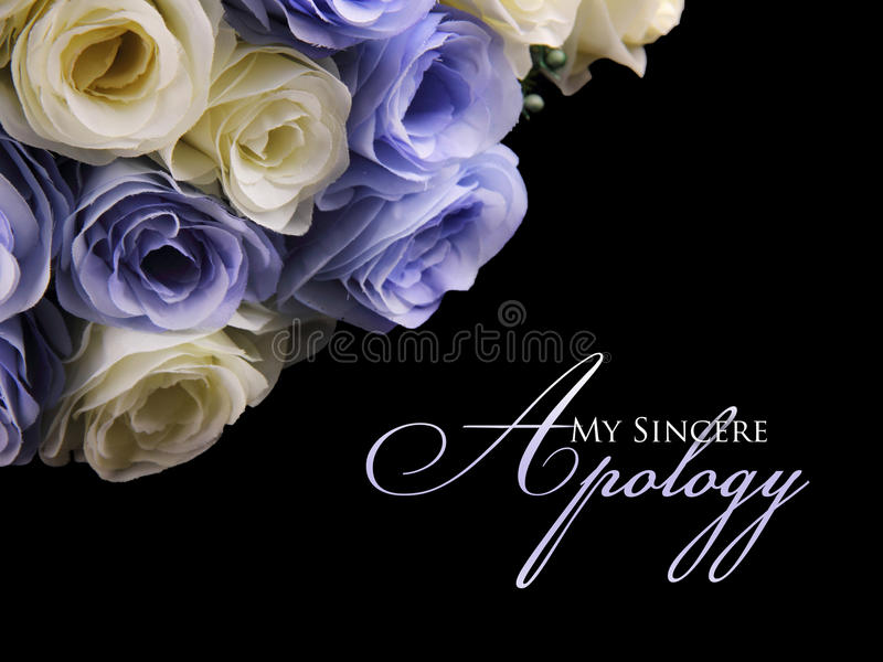 My Sincere Apology. Graceful apology card design with image of white and purple roses on top left, over black background royalty free stock photography