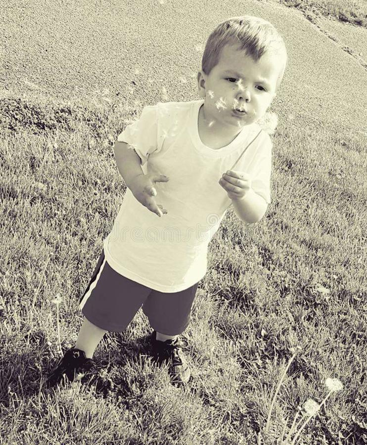 My son blowing dandelions on a beautiful day stock image