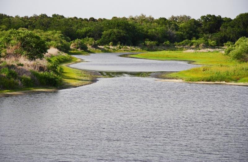 Myakka Fluss stockbilder