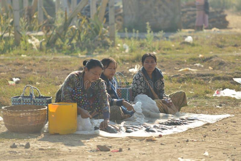 Myanmar Bagan natte markt het verkopen vissen stock foto's