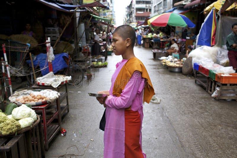 Myanmar Buddhist Nun royalty free stock photography