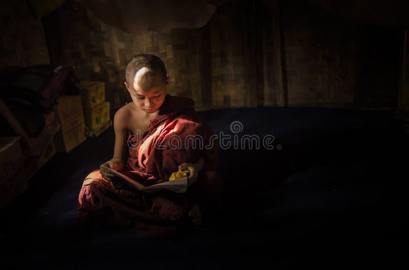 Myanmar - 5 de dezembro de 2016: A monge pequena do principiante está lendo o livro no compartimento do templo com luz da janela, fotografia de stock