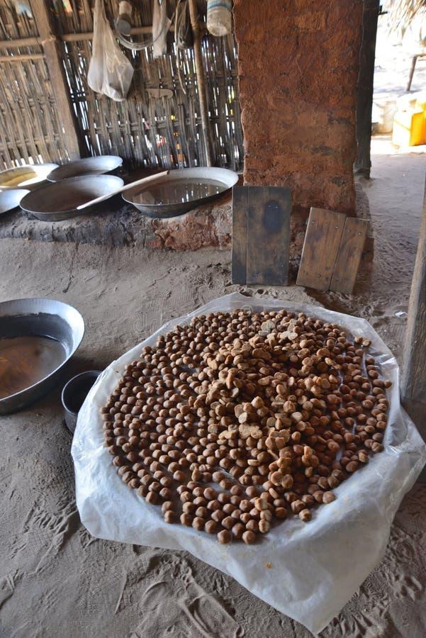 Myanmar de noten van de kokosnotenpalm stock foto