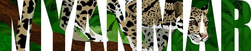 Myanmar illustratieverstand betrokken luipaard vector illustratie