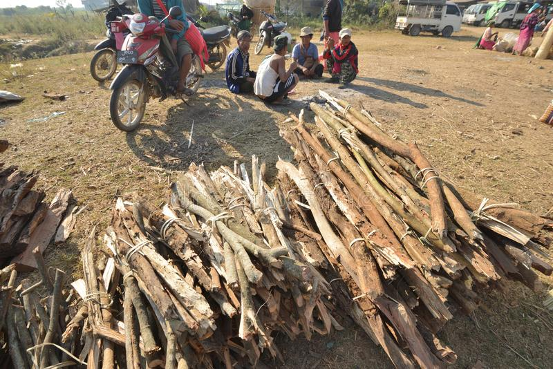 Myanmar Bagan wood tree inventory market. Myanmar Inle market wood tree stock market royalty free stock photos