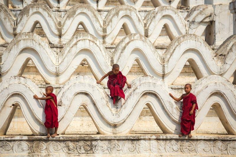 Myanmar novice three were climbing the pagoda royalty free stock photography