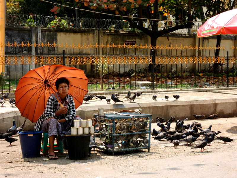Myanmar woman and her fortune telling birds in cage royalty free stock photography