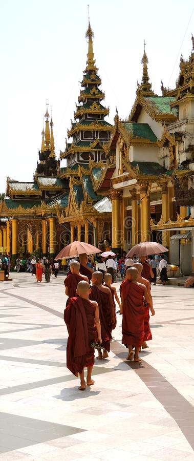 Myanmar young monks royalty free stock photography