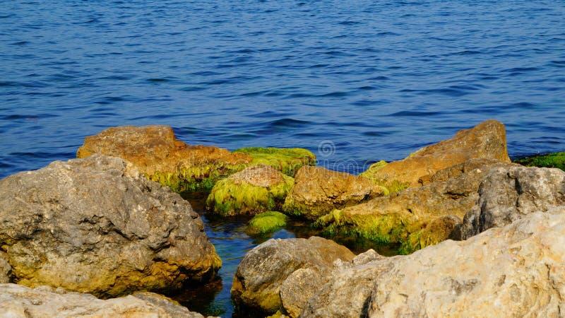 Mycket blått-blått Black Sea fotografering för bildbyråer