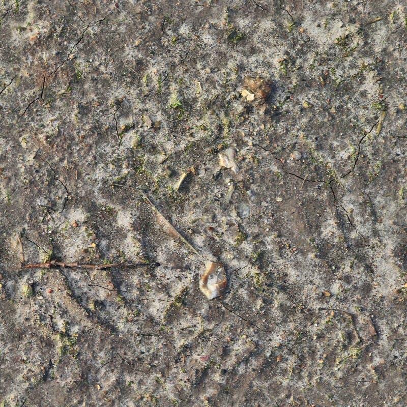 Mycket detaljerad sömlös texturmodell av tunnlandjordning och smuts i hög upplösning arkivbilder