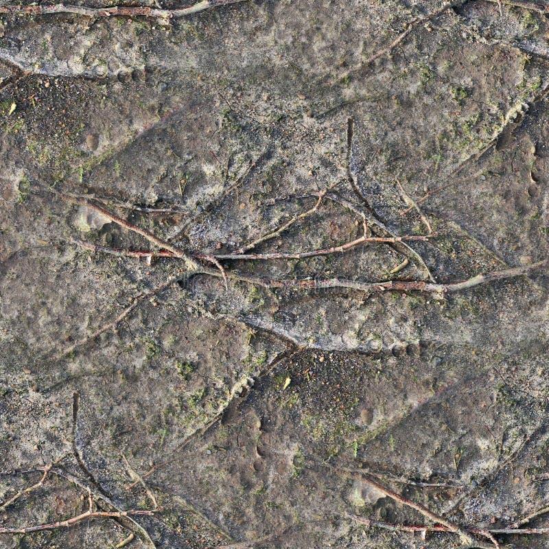 Mycket detaljerad sömlös texturmodell av tunnlandjordning och smuts i hög upplösning arkivfoton