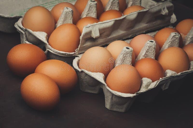 Mycket fega ägg arkivfoto