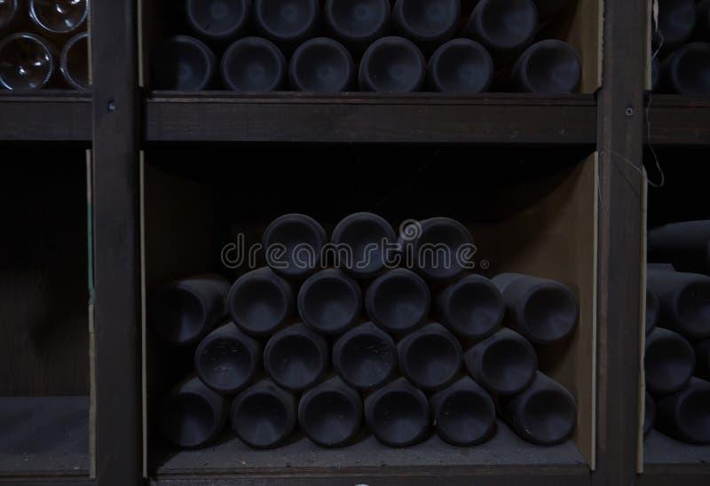 Mycket gammalt sällsynt vin i vinkällare royaltyfri fotografi