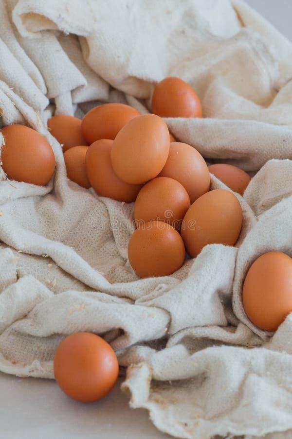 Mycket gula ägg i tyget, förberedelse för påsken, ny höna arkivbild