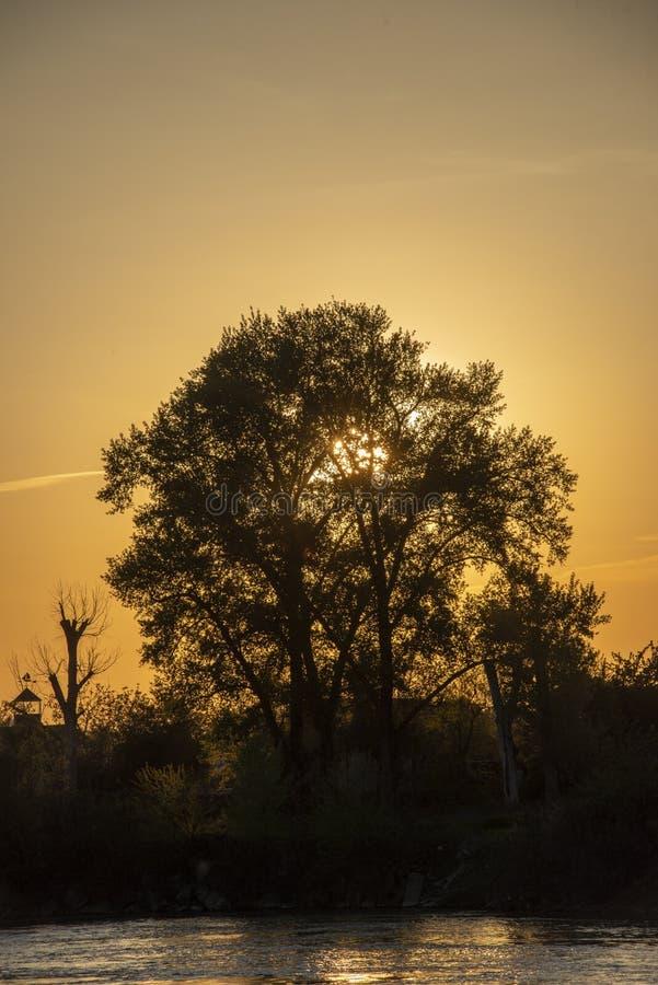 mycket härlig och färgrik soluppgång över floden royaltyfri bild
