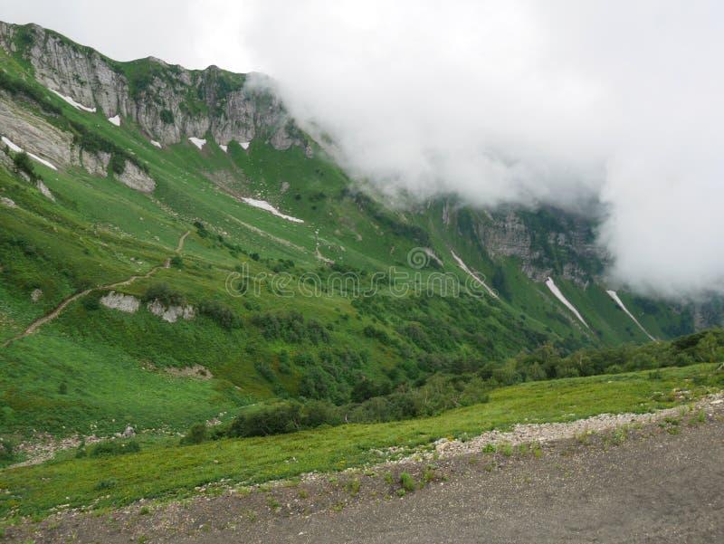 Mycket härliga berg, gröna berg royaltyfri foto
