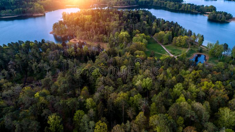Mycket h?rligt flyg- landskap av skogen och sj?n royaltyfria foton