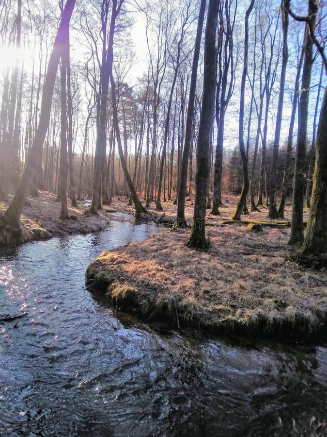 Mycket trevlig flod royaltyfri fotografi