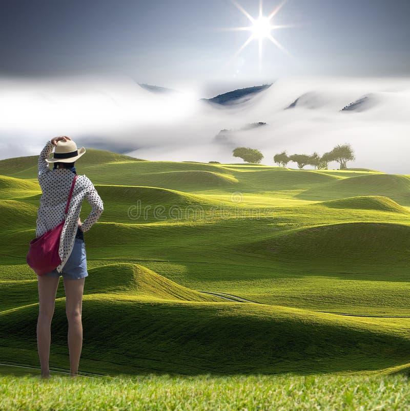 Mycket trevlig sikt av det härliga golfstället royaltyfria bilder