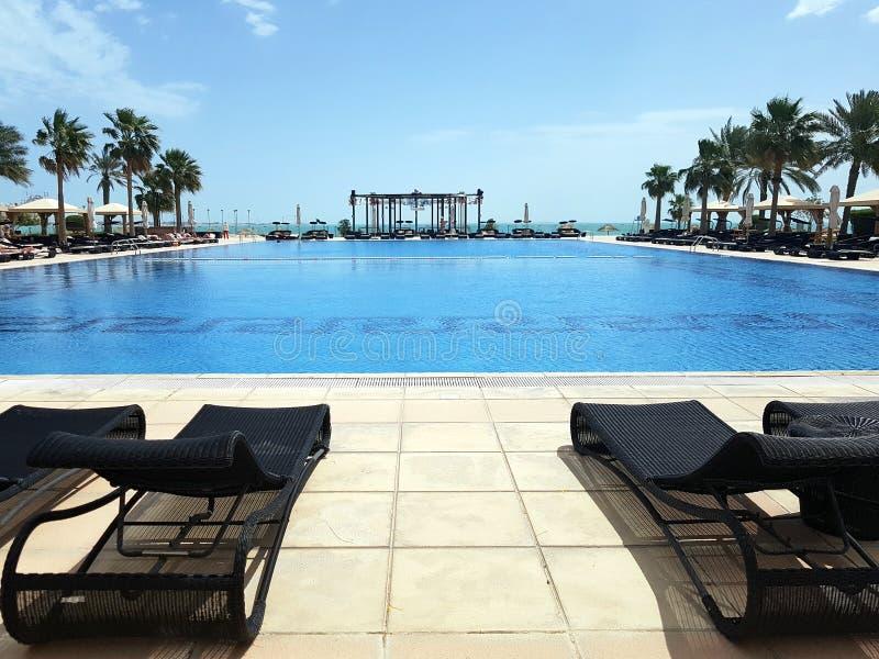 Mycket trevlig simbassäng som omges av palmträd och sunbeds, semesterbakgrund arkivfoto