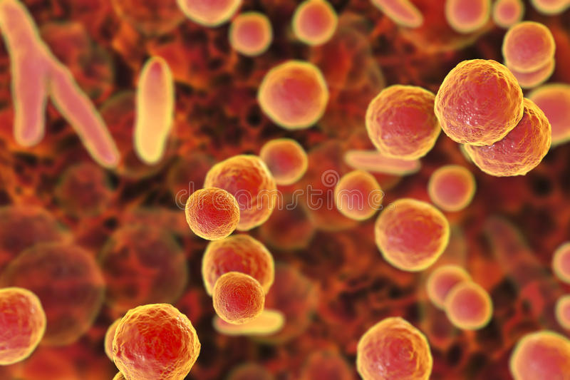 Mycoplasma bakterie, ilustracja royalty ilustracja