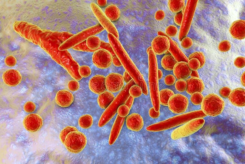 Mycoplasmabakterier, illustration stock illustrationer