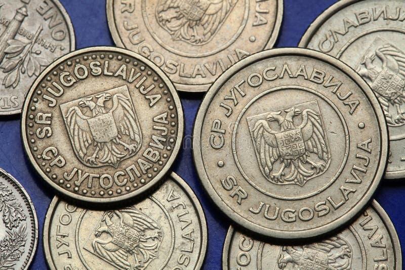 Mynt av Jugoslavien royaltyfri foto