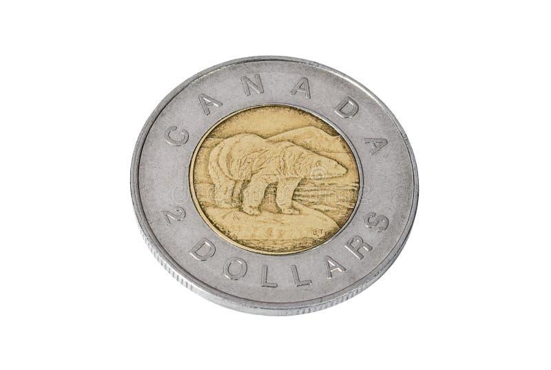 Mynt av två kanadensiska dollar royaltyfri bild